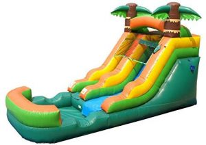 Pogo Bounce House Inflatable Water Slide